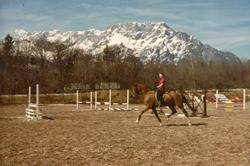 Constance rides Medium Trot